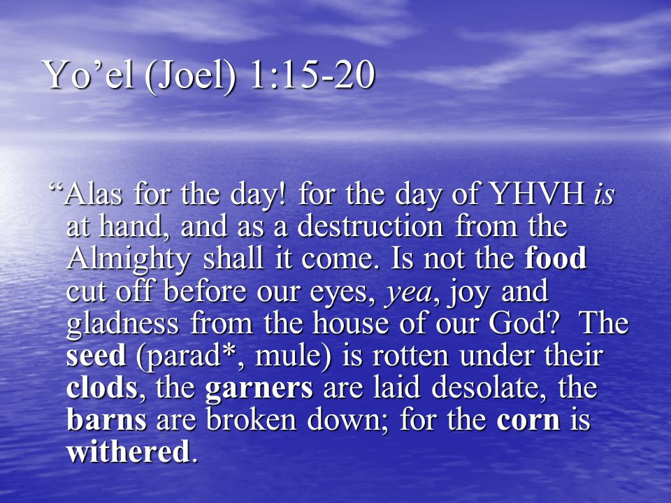 Yo'el (Joel) 1:15-20