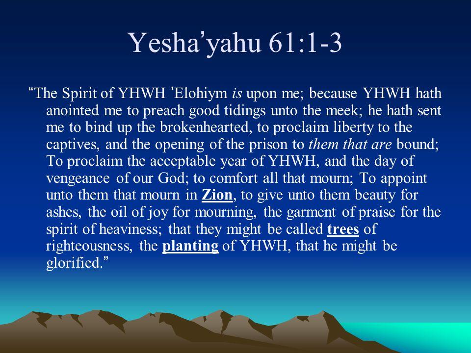 Yesha'yahu 61:1-3