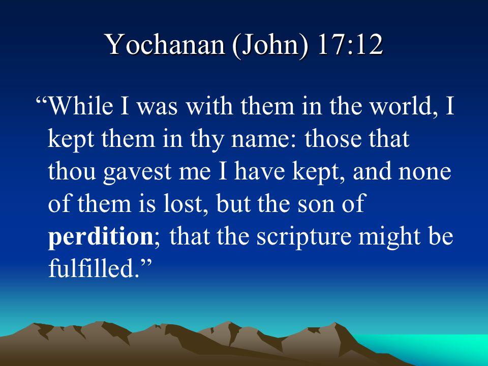 Yochanan (John) 17:12