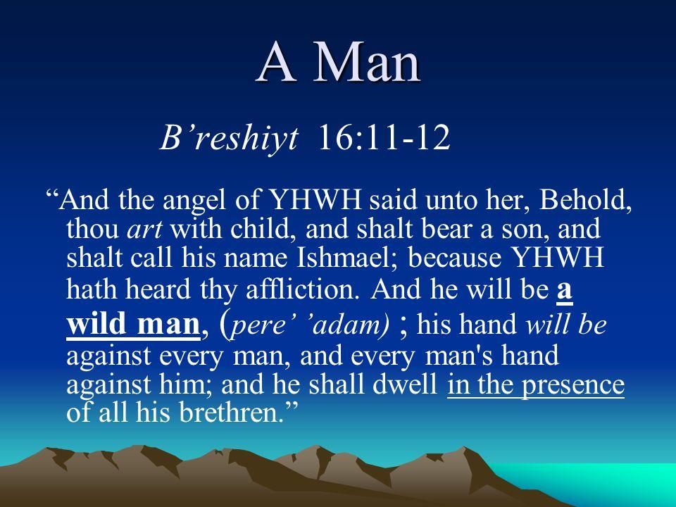 A Man B'reshiyt 16:11-12.