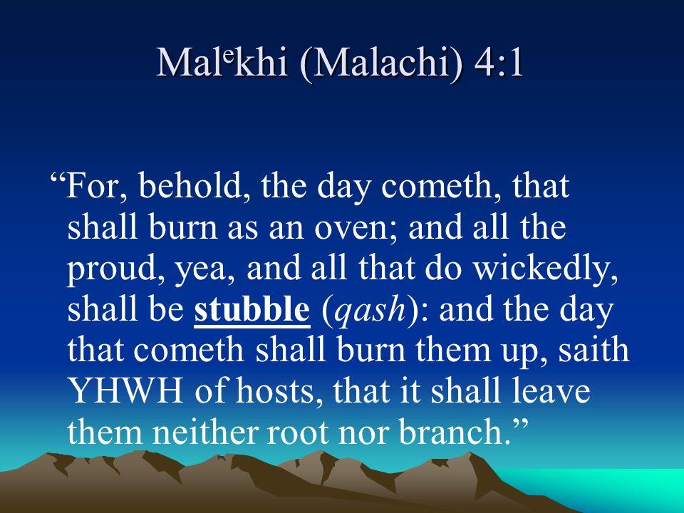 Malekhi (Malachi) 4:1