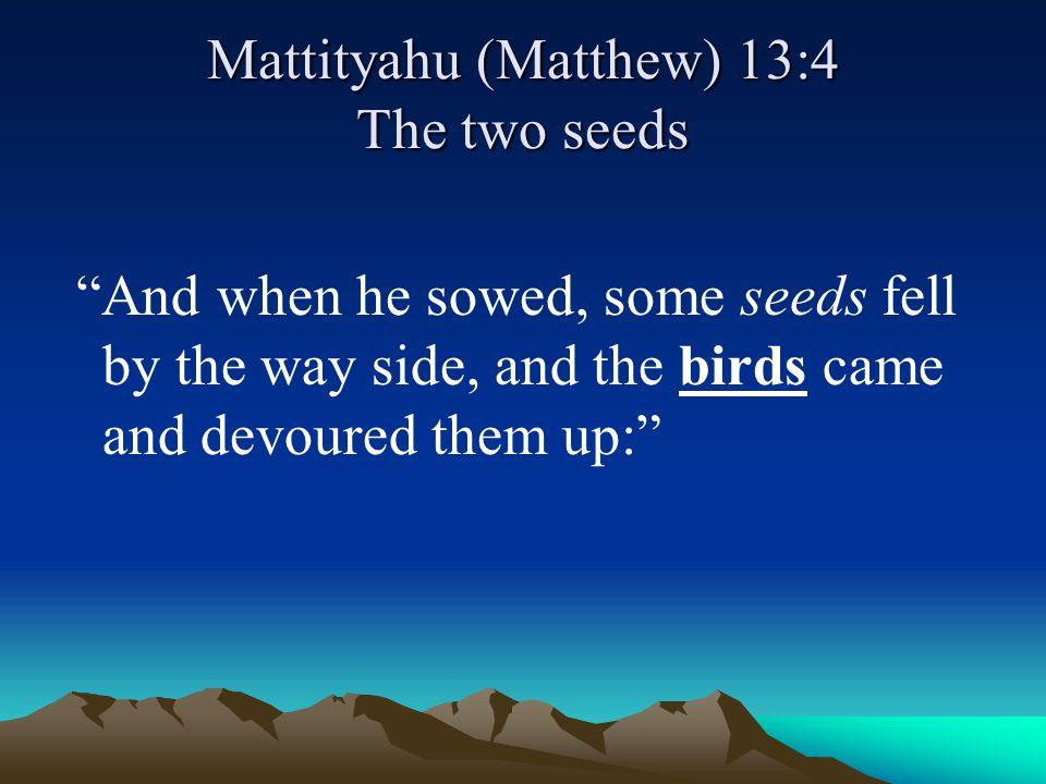 Mattityahu (Matthew) 13:4 The two seeds