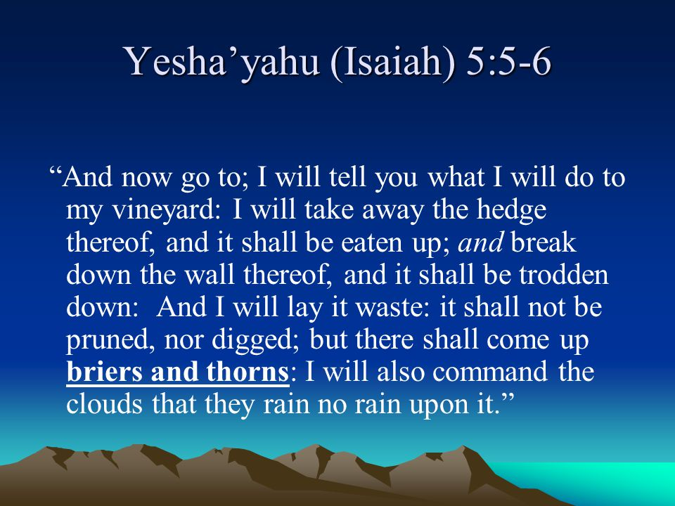 Yesha'yahu (Isaiah) 5:5-6