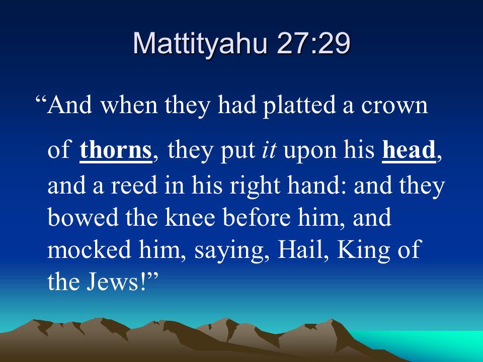 Mattityahu 27:29