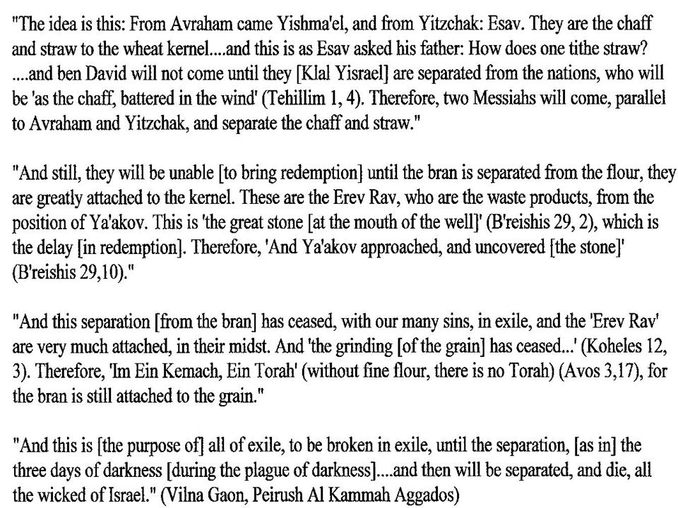 According to Ohr HaChaim the erev rav were spies sent along by pharaoh to sow seeds of dissension among the Jews.