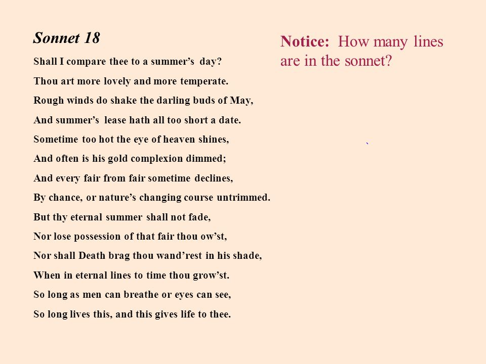 Notice: How many lines are in the sonnet