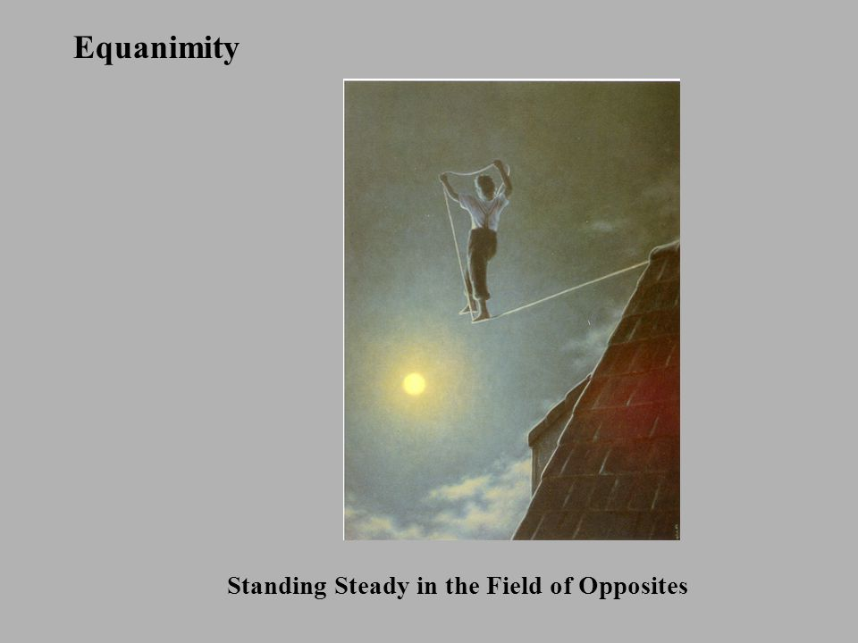 Standing Steady in the Field of Opposites