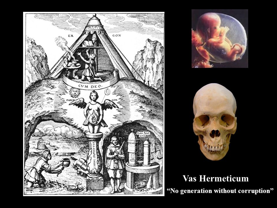 Vas Hermeticum No generation without corruption