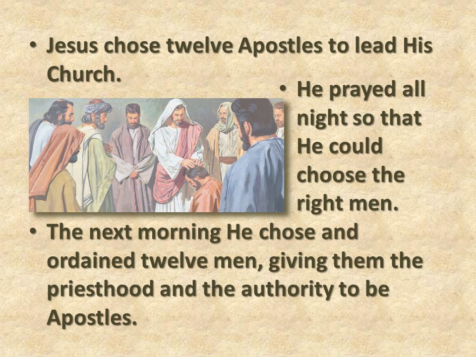 Jesus chose twelve Apostles to lead His Church.