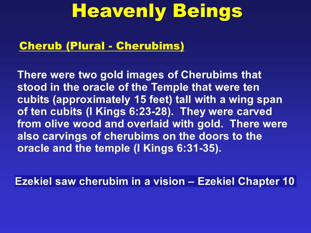 Heavenly Beings Cherub (Plural - Cherubims)