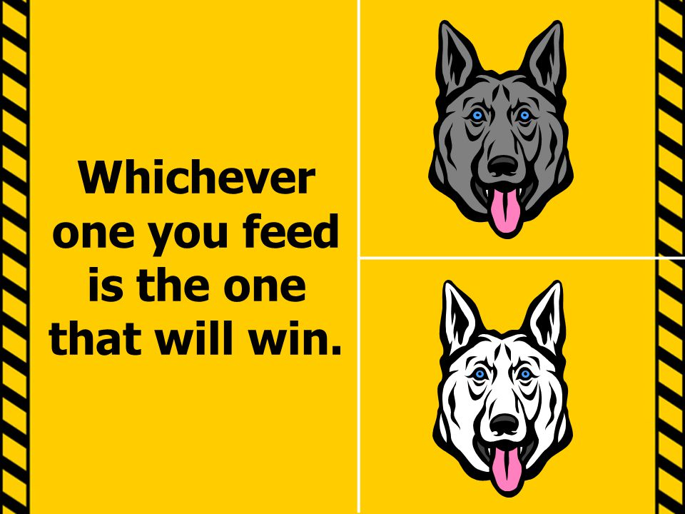 Whichever one you feed is the one that will win.