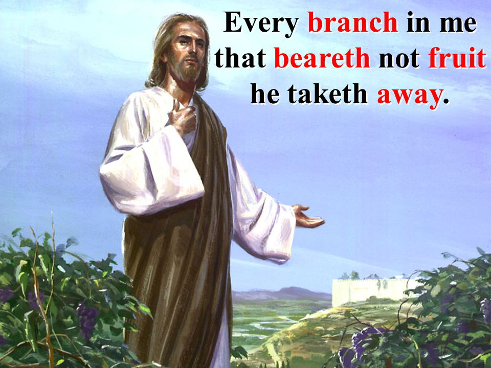 Every branch in me that beareth not fruit he taketh away.