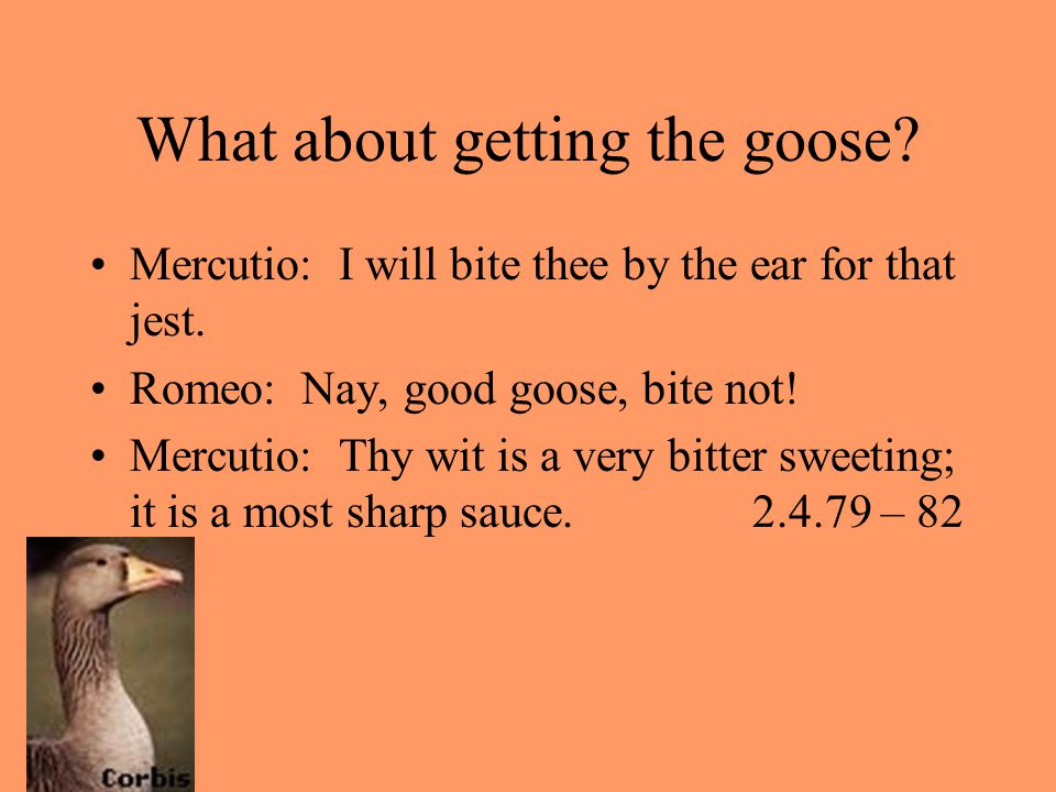 What about getting the goose
