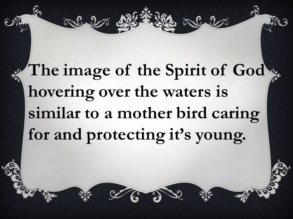 The image of the Spirit of God hovering over the waters is similar to a mother bird caring for and protecting it's young.