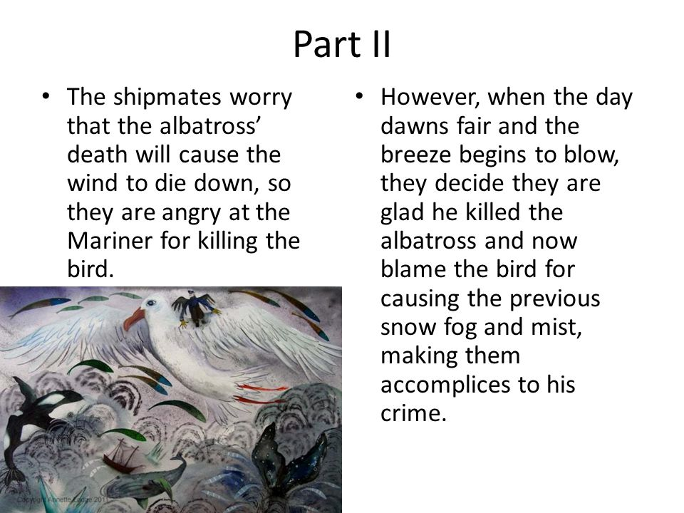 Part II The shipmates worry that the albatross' death will cause the wind to die down, so they are angry at the Mariner for killing the bird.