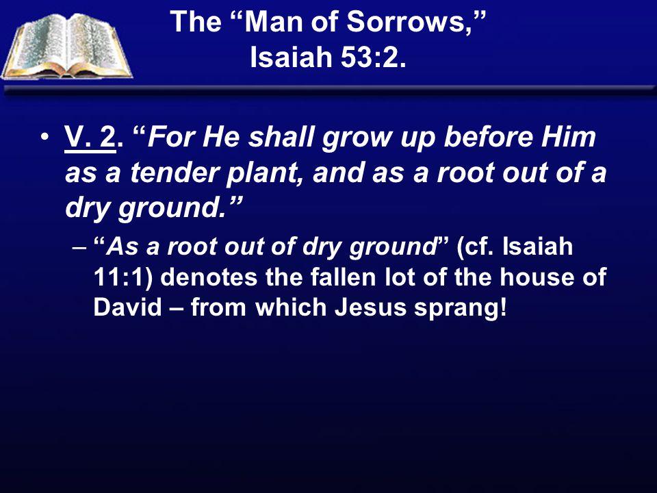 The Man of Sorrows, Isaiah 53:2.