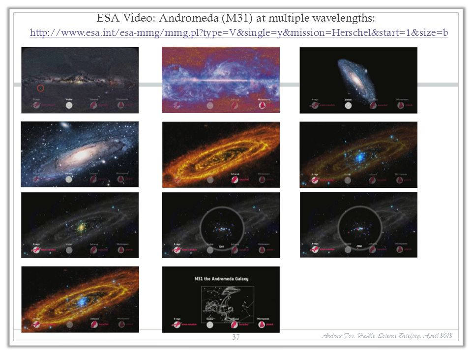 ESA Video: Andromeda (M31) at multiple wavelengths: http://www. esa