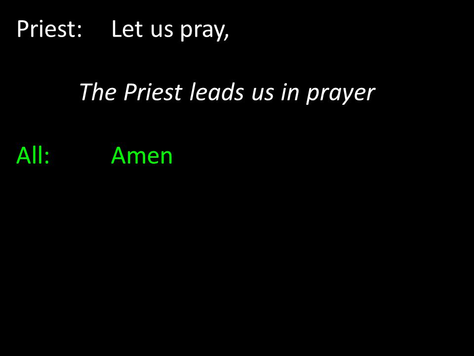 The Priest leads us in prayer