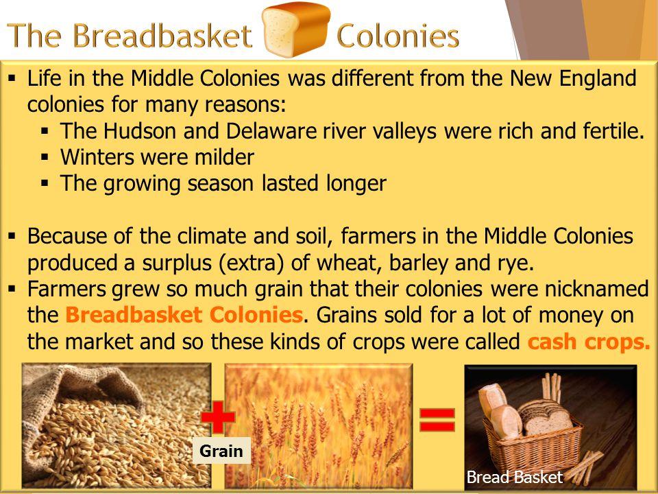 The Breadbasket Colonies