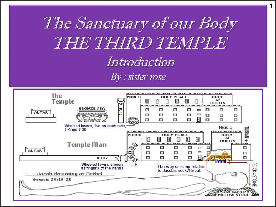 The Sanctuary of our Body