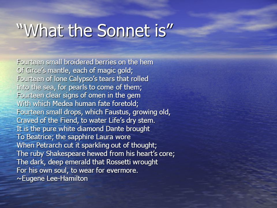 What the Sonnet is Fourteen small broidered berries on the hem