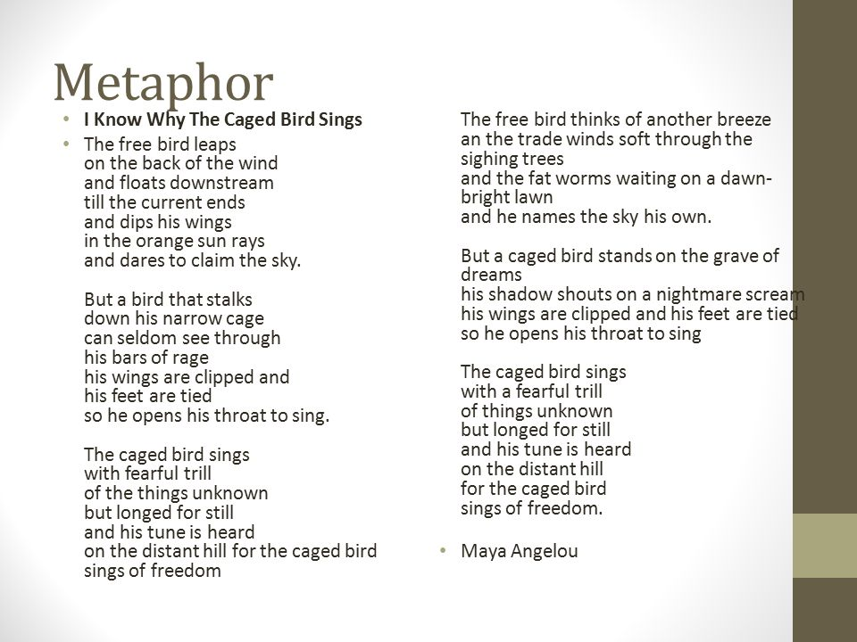Metaphor I Know Why The Caged Bird Sings