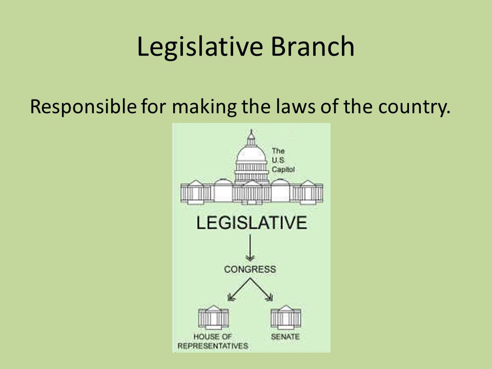 Legislative Branch Responsible for making the laws of the country.