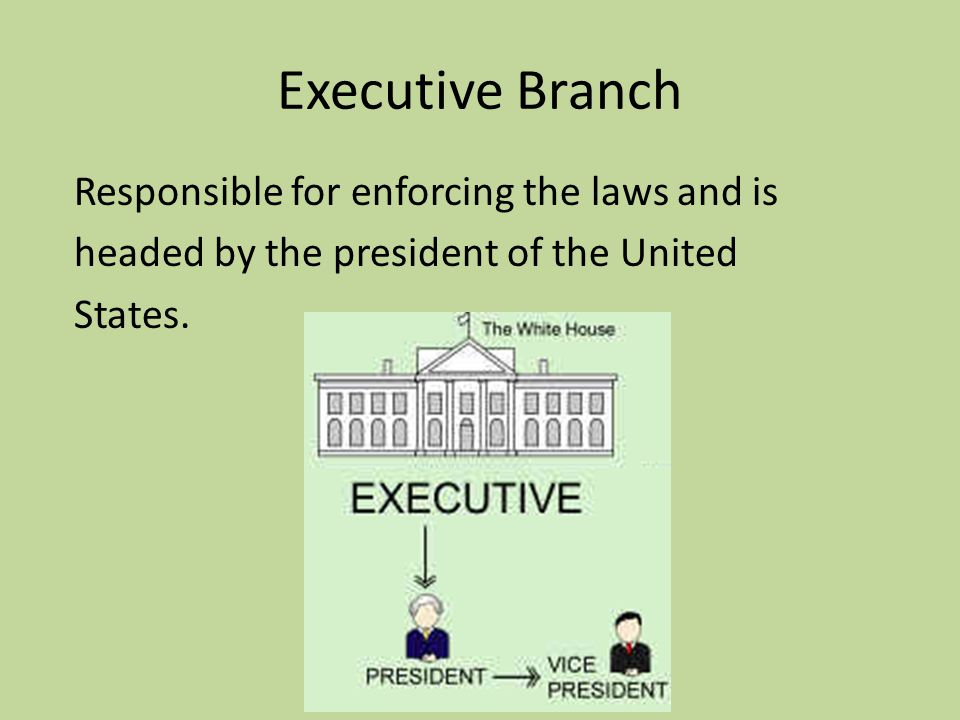 Executive Branch Responsible for enforcing the laws and is