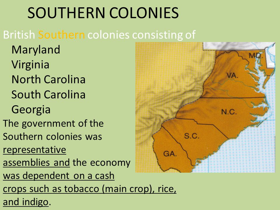 SOUTHERN COLONIES British Southern colonies consisting of Maryland Virginia North Carolina South Carolina Georgia The government of the Southern colonies was representative assemblies and the economy was dependent on a cash crops such as tobacco (main crop), rice, and indigo.