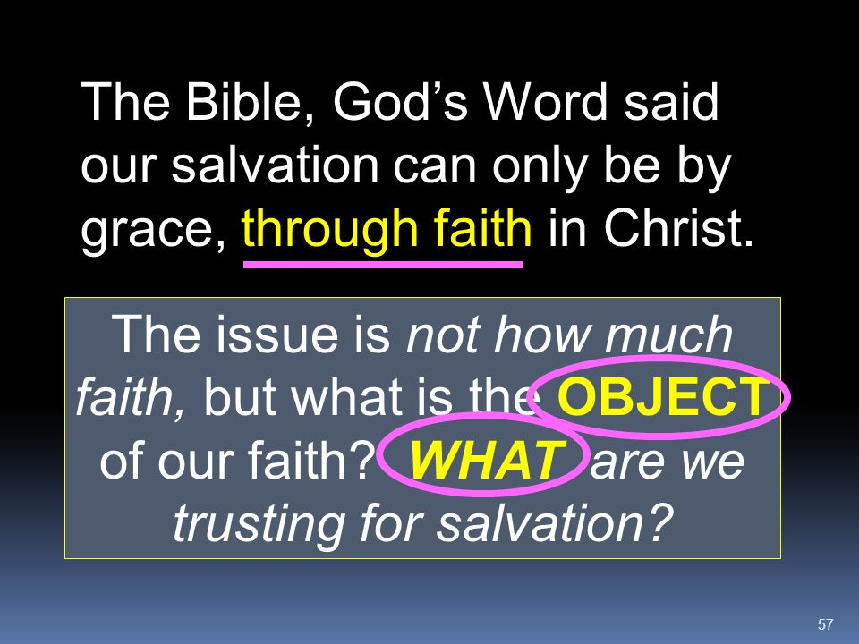 The Bible, God's Word said our salvation can only be by grace, through faith in Christ.