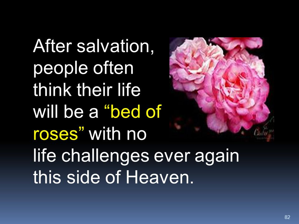After salvation, people often think their life will be a bed of roses with no