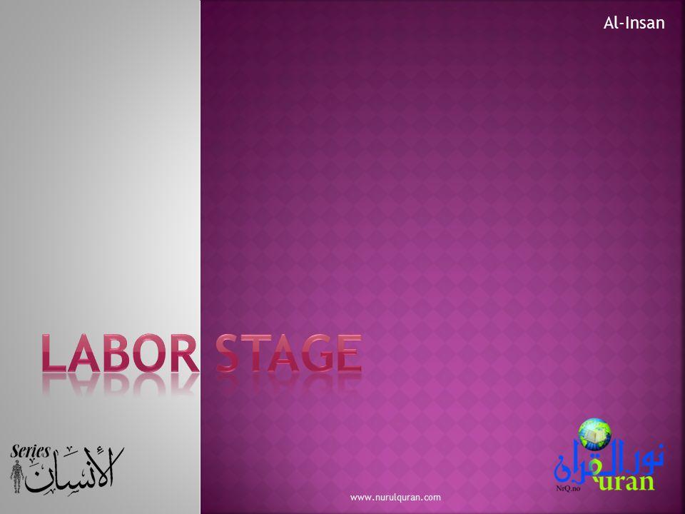 Al-Insan Labor Stage www.nurulquran.com