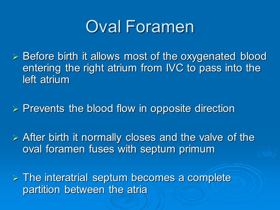 Oval Foramen Before birth it allows most of the oxygenated blood entering the right atrium from IVC to pass into the left atrium.