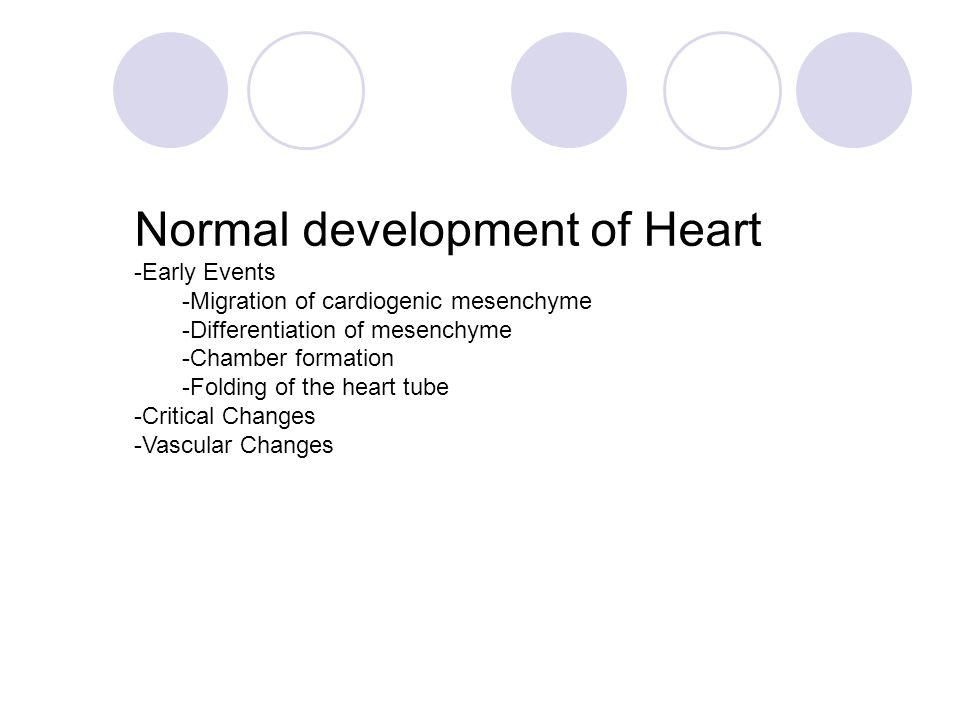 Normal development of Heart