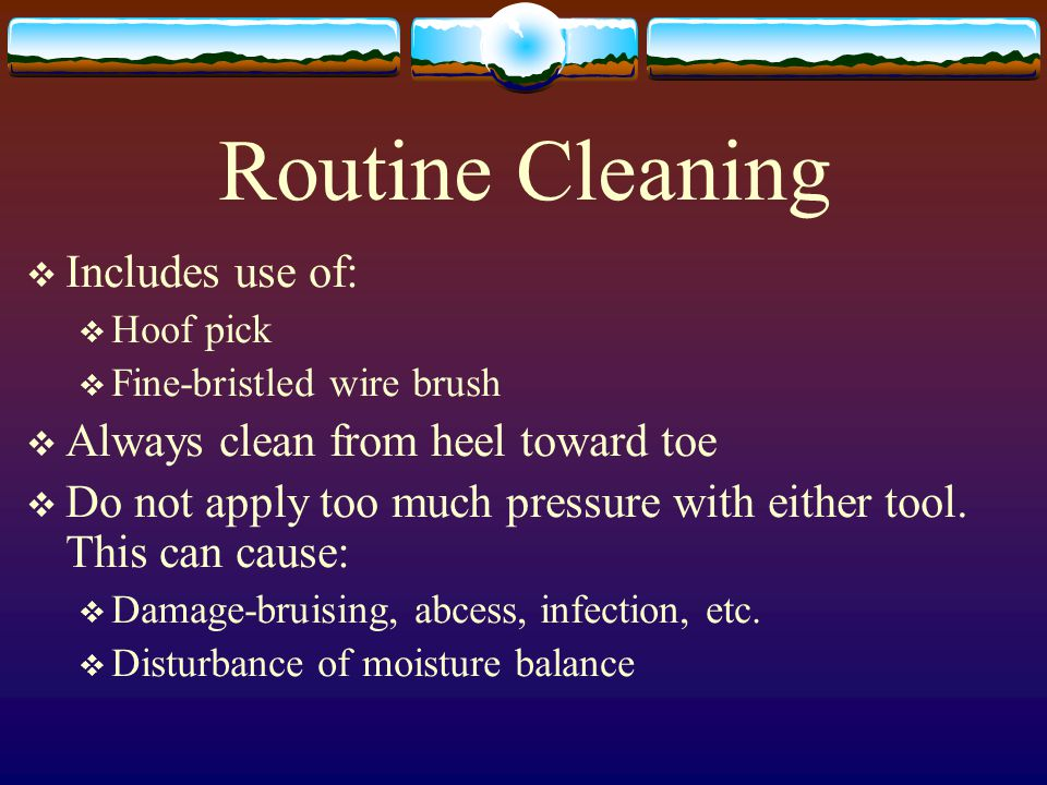 Routine Cleaning Includes use of: Always clean from heel toward toe