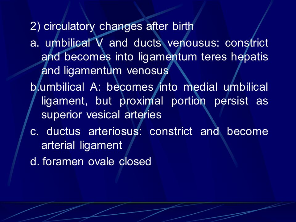 2) circulatory changes after birth