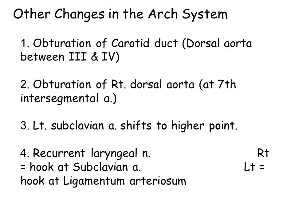 Other Changes in the Arch System