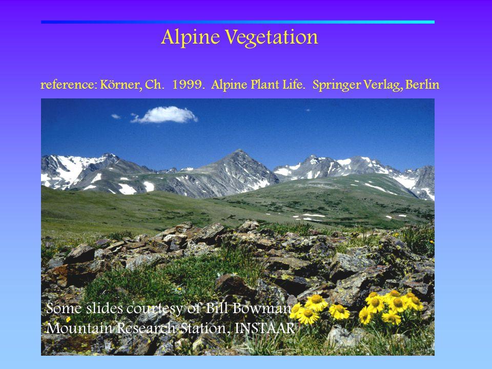 Alpine Vegetation Some slides courtesy of Bill Bowman