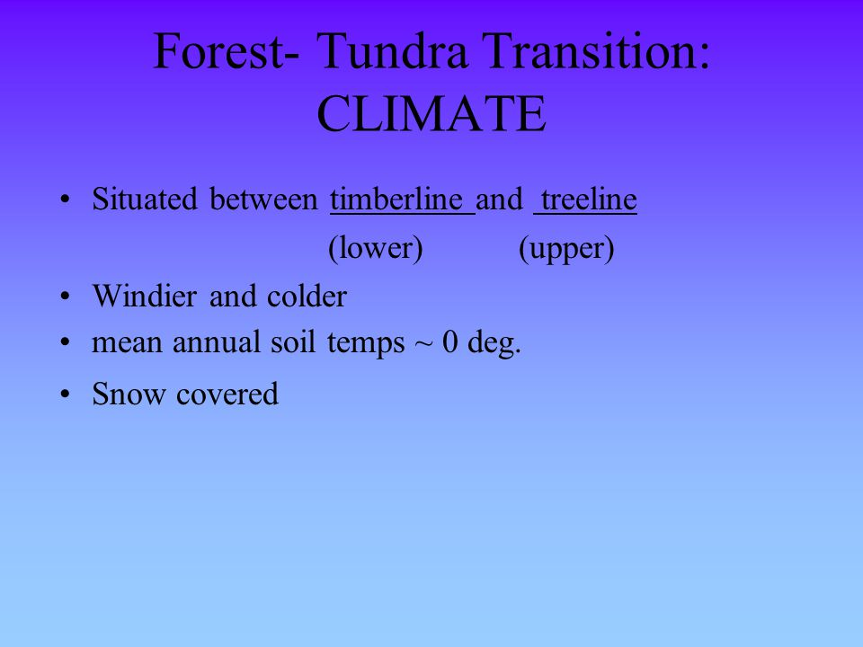 Forest- Tundra Transition: CLIMATE