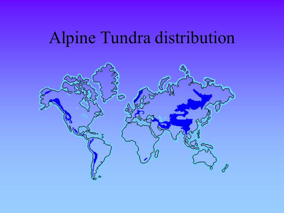 Alpine Tundra distribution