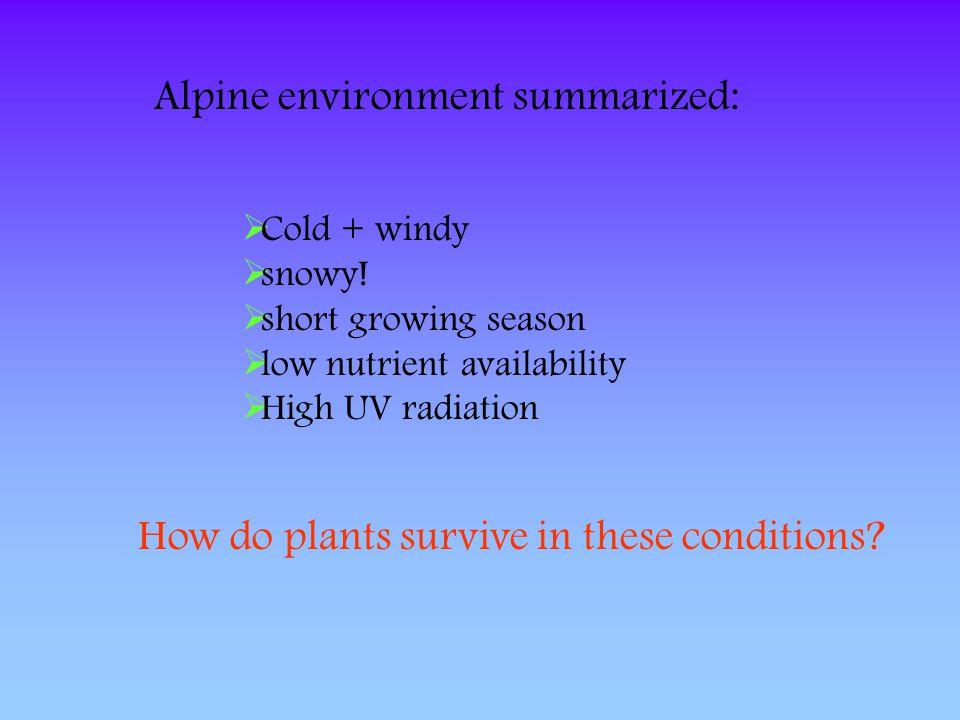 Alpine environment summarized: