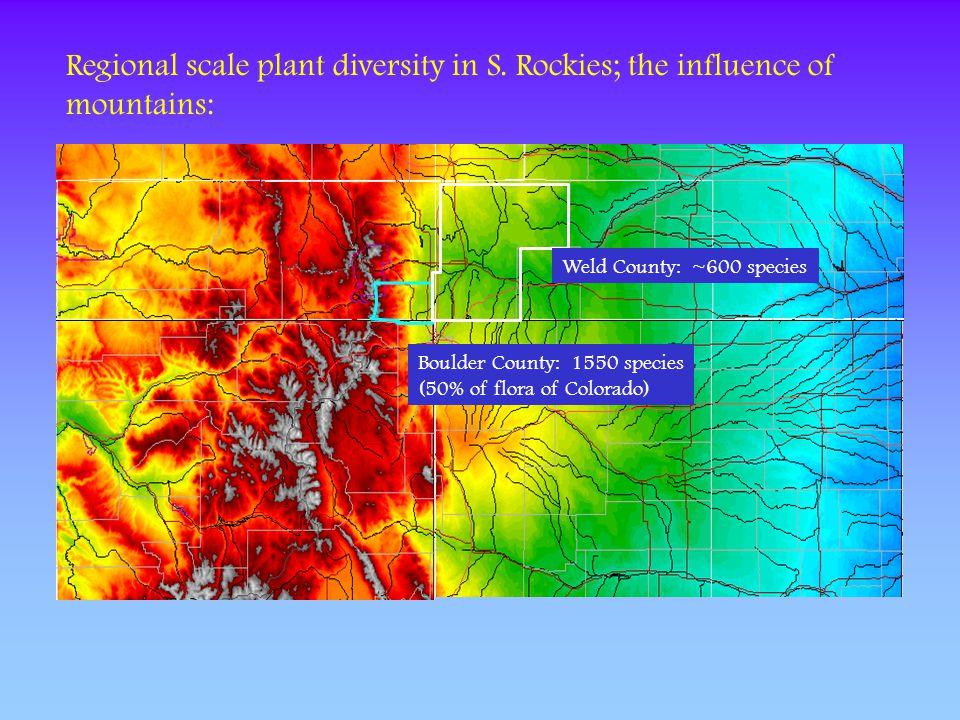 Regional scale plant diversity in S