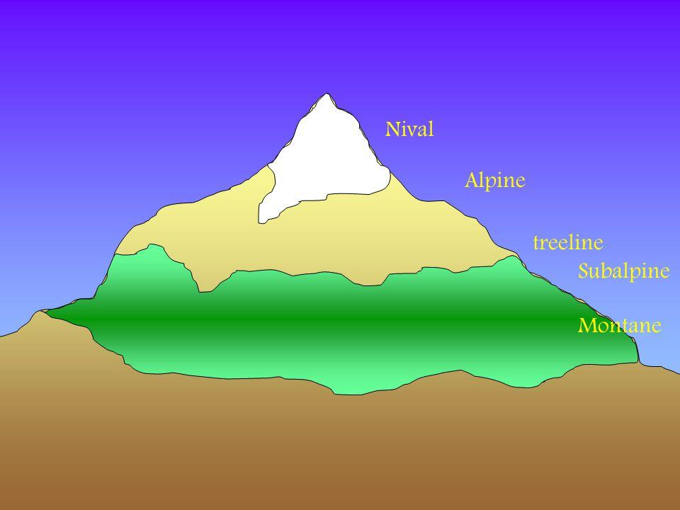 Nival Alpine treeline Subalpine Montane