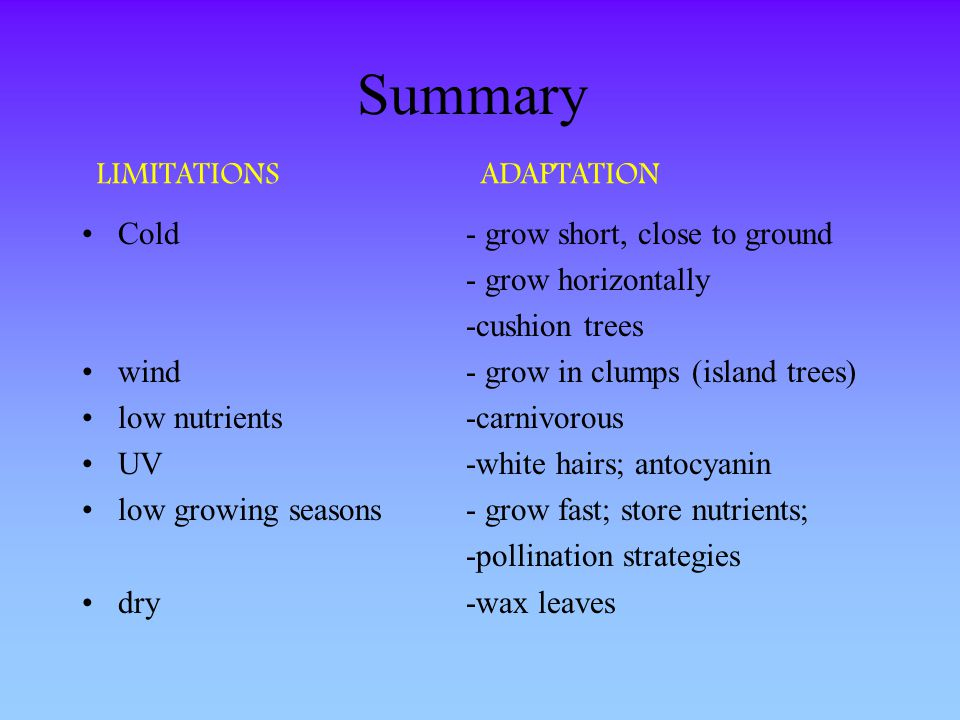 Summary LIMITATIONS ADAPTATION Cold - grow short, close to ground