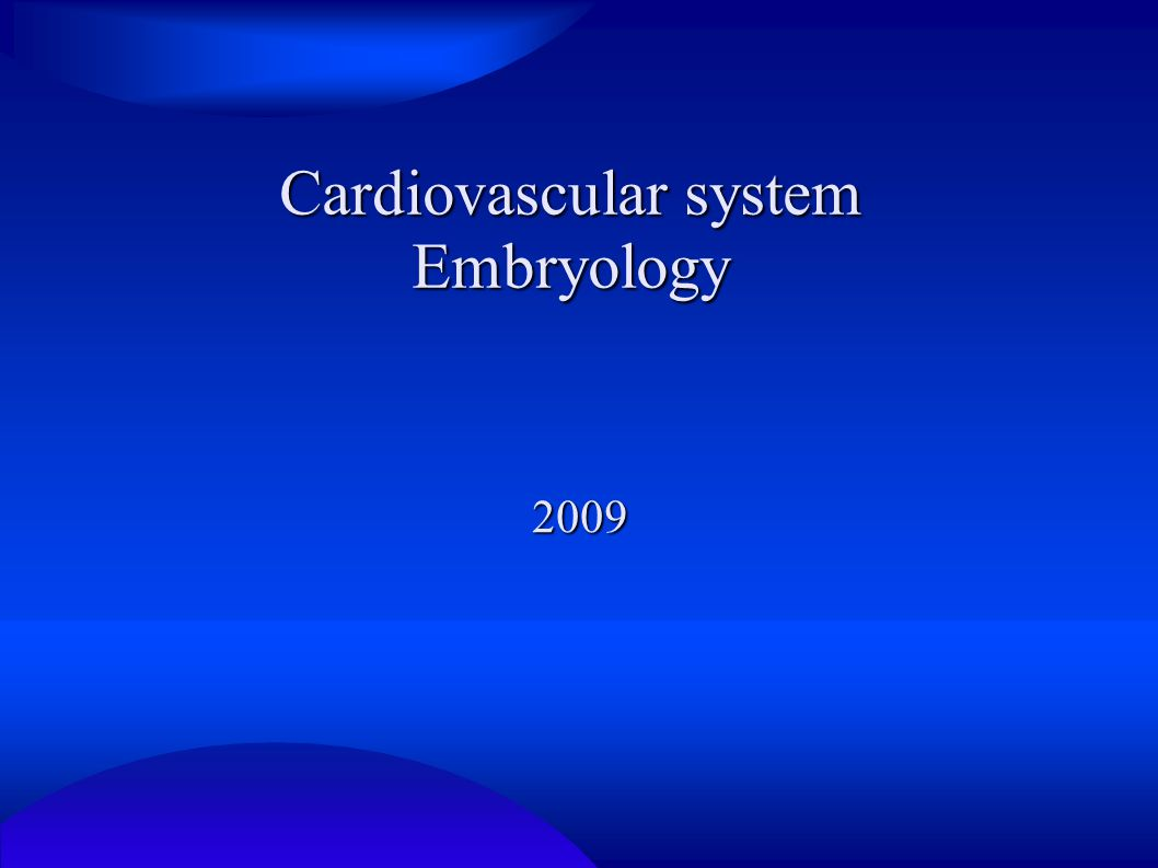 Cardiovascular system Embryology