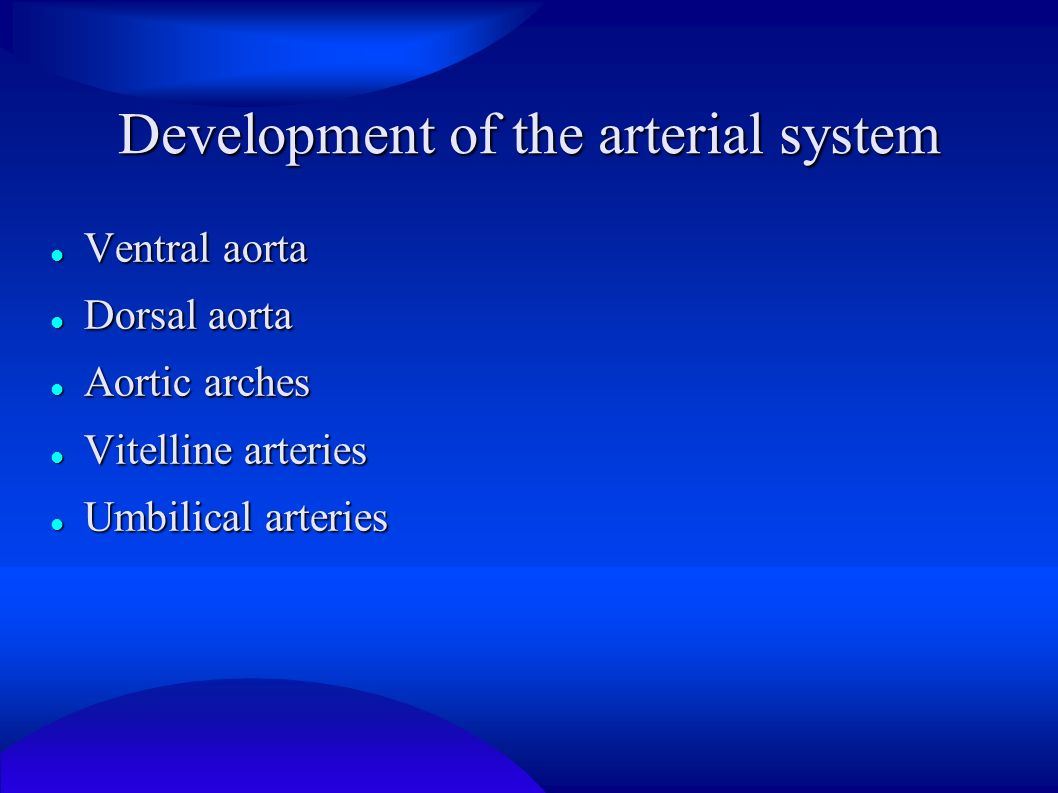 Development of the arterial system
