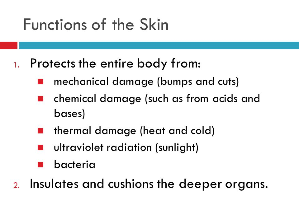 Functions of the Skin Protects the entire body from: