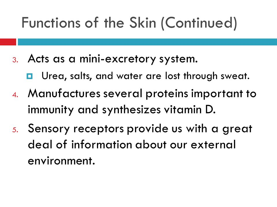 Functions of the Skin (Continued)