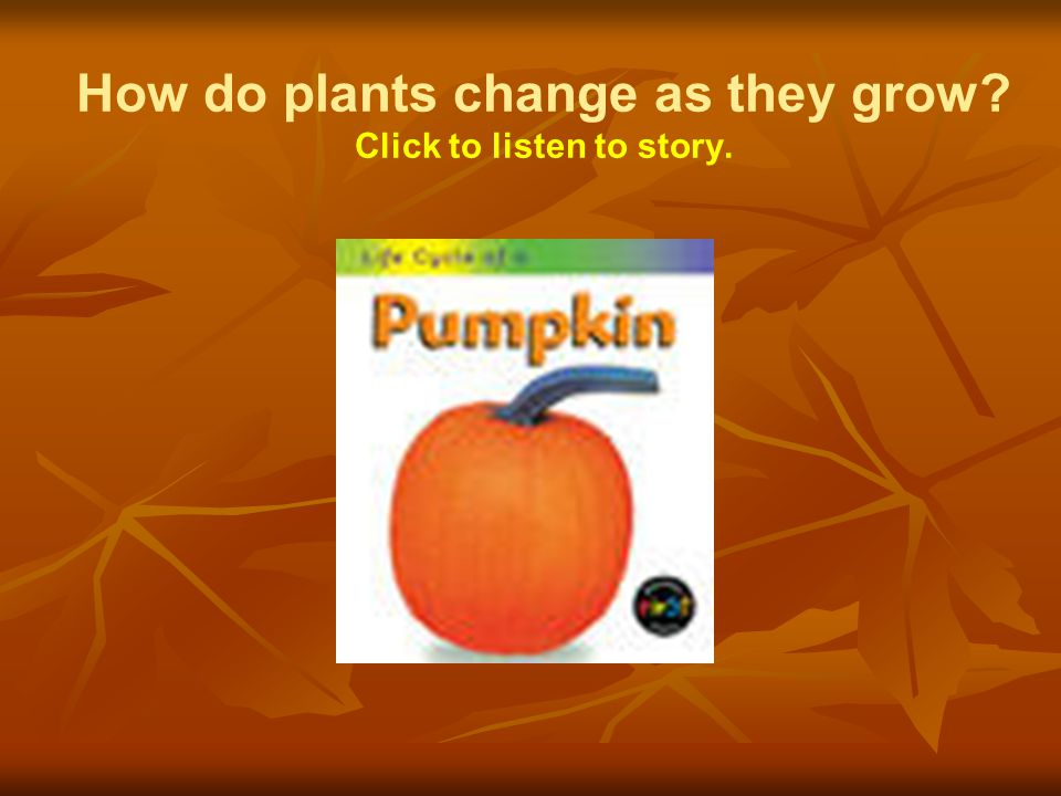 How do plants change as they grow Click to listen to story.