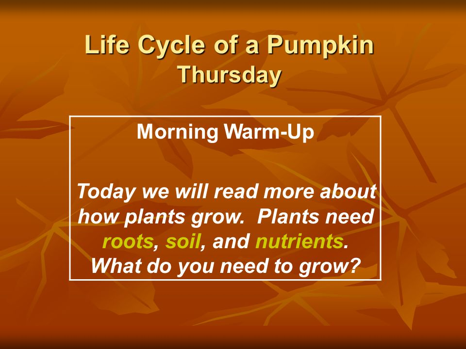 Life Cycle of a Pumpkin Thursday